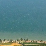 Winds from the east stir up the waters of the Kinneret