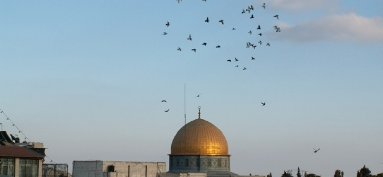 Jerusalem Journal # 173
